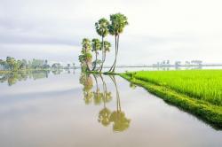Mekong Delta System