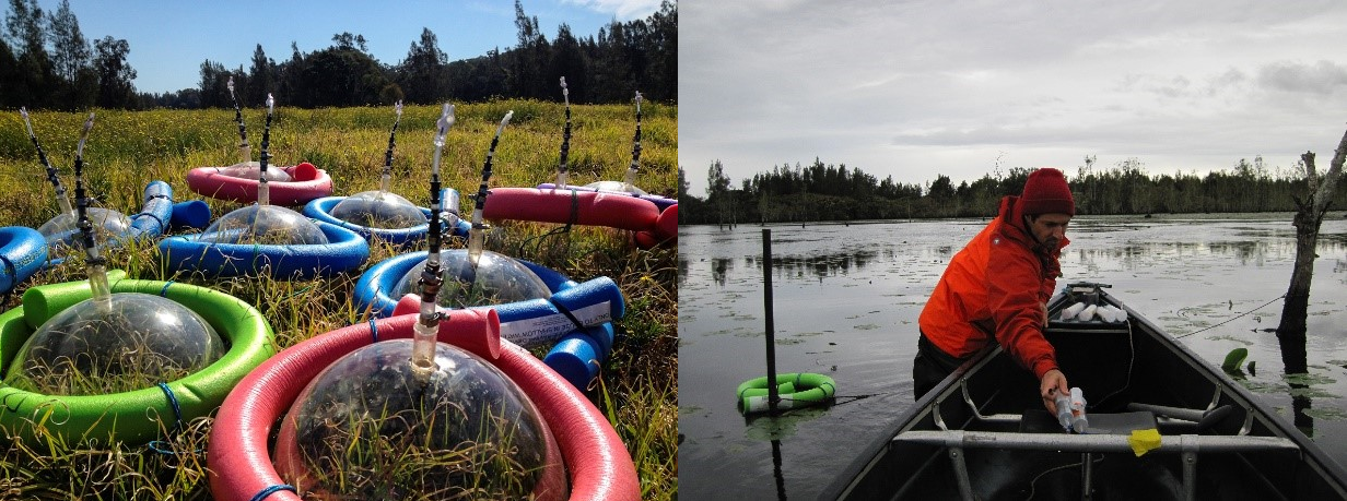 Methane ebullition traps ready to deploy (left) and collecting ebullition gas samples from the wetland to analyze through the Picarro G2201-i (right)